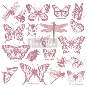 Monarch Collection